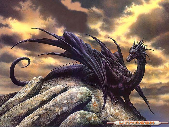 Razas disponibles Dragon_negro
