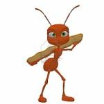 hormiga-roja