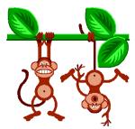 ahi-vienen-los-monos